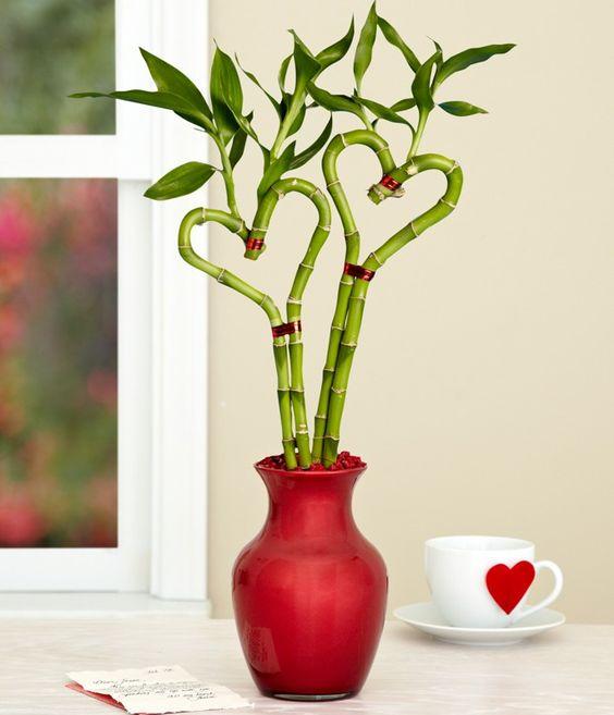 Бамбук как элемент декора