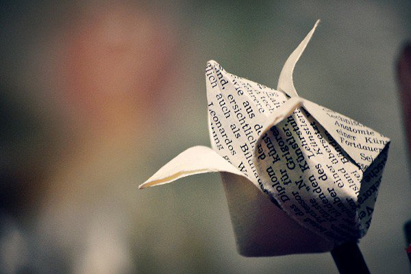 origami-flower-12-600x400