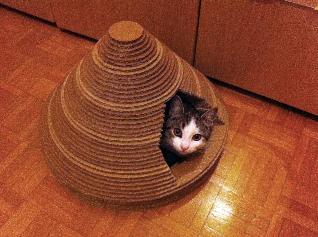 FUF1ZG1HU489880.LARGE-min Как сделать домик для кота своими руками: 13 идей и мастер классов