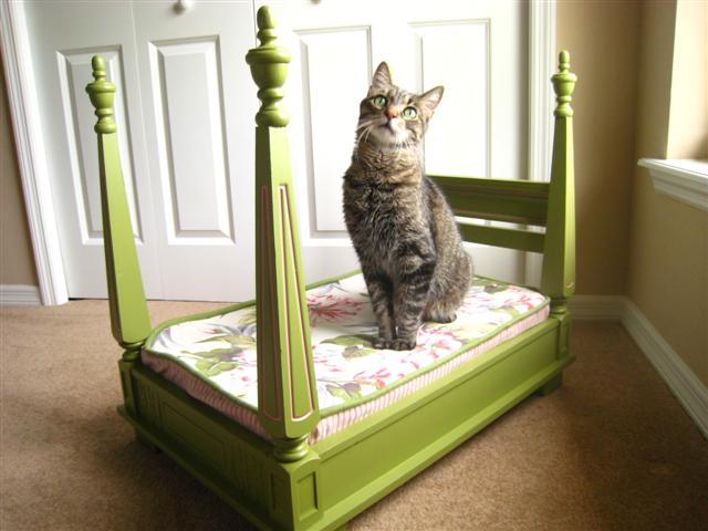 dog-bed-097-Small-min.jpg