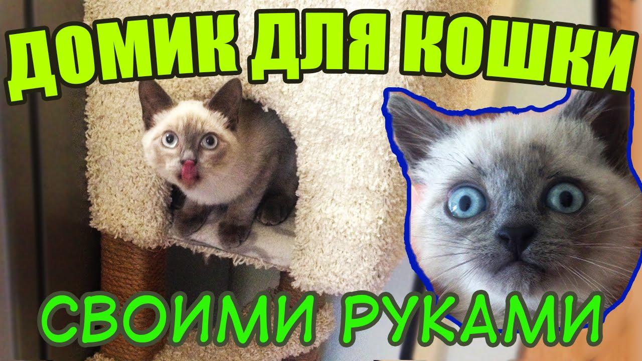 maxresdefault-1 Как сделать домик для кота своими руками: 13 идей и мастер классов