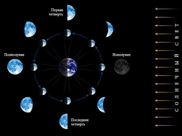 лунный гороскоп для маникюра