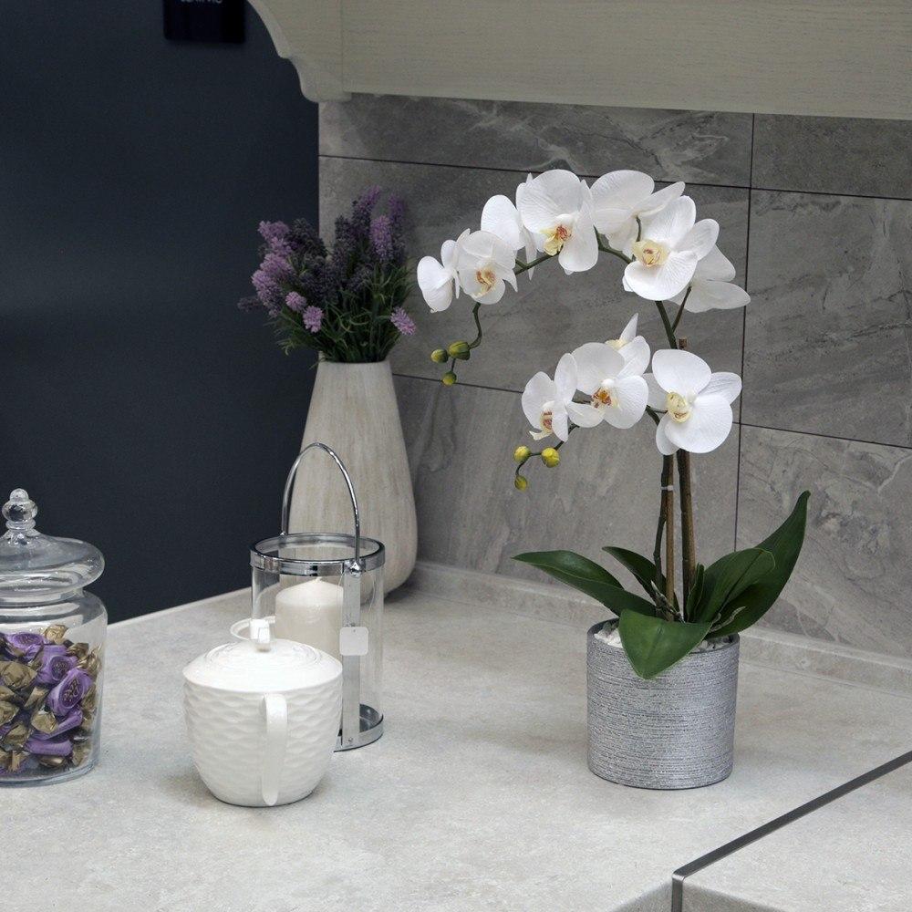 Орхидея в напольном горшке фото пример лишь