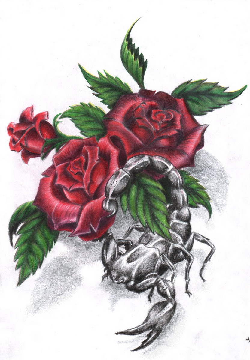 проблема картинки тату скорпиона и цветка цитата добро