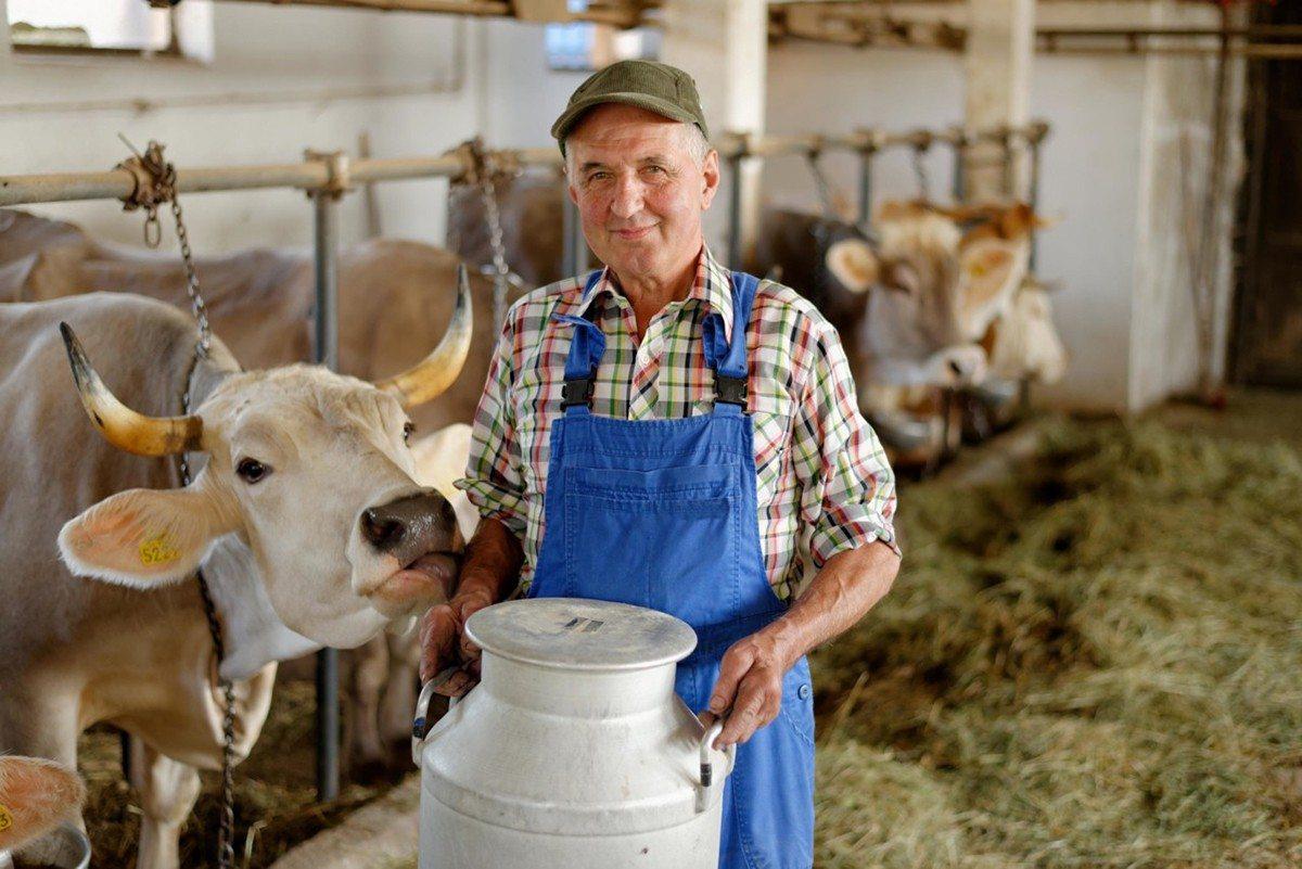 картинки о профессии животновода что сделаны