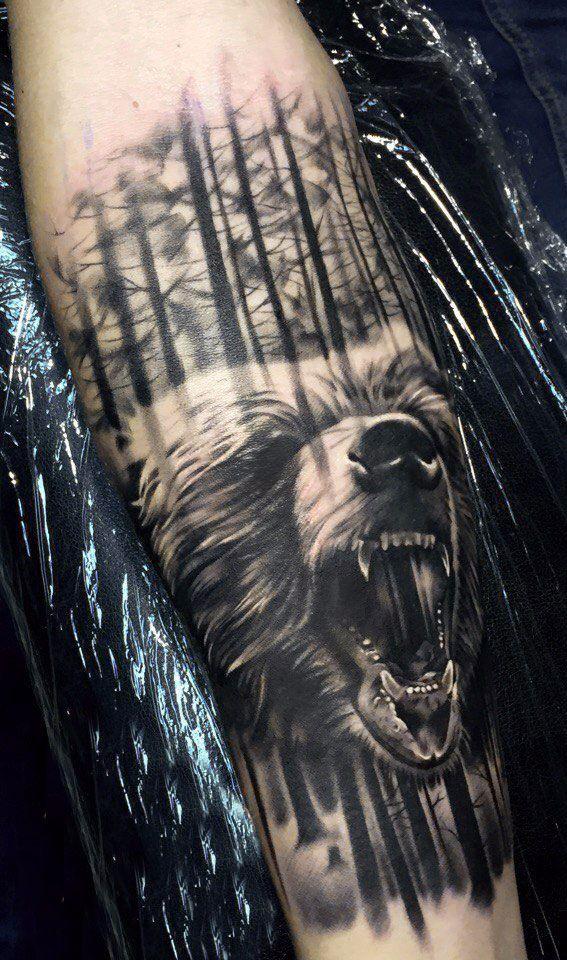медведь и лес