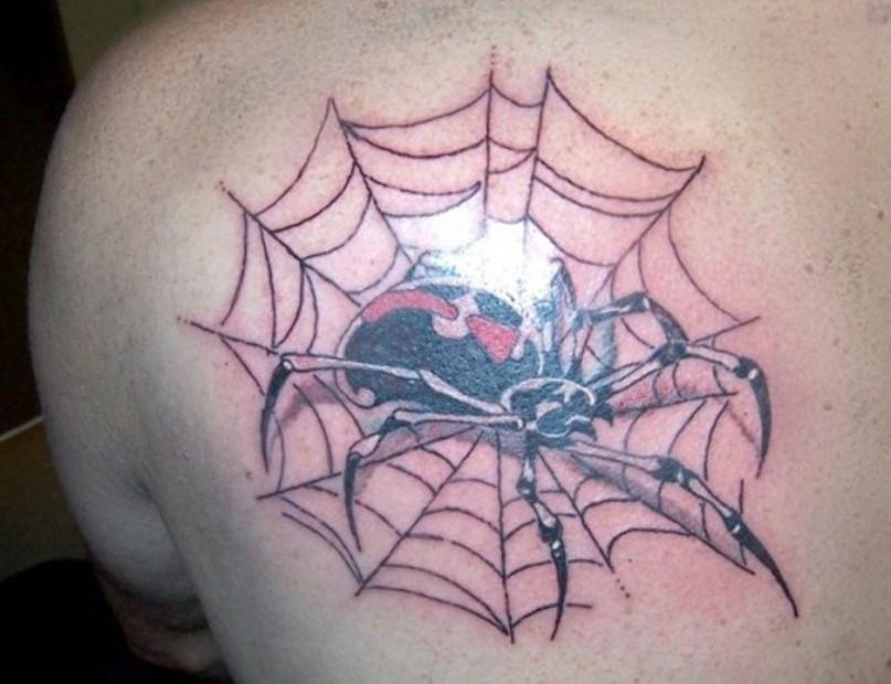паук в паутине на плече