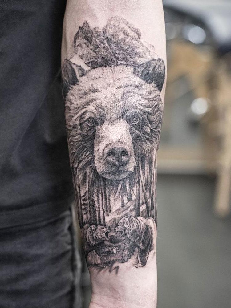 тема лес и медведи