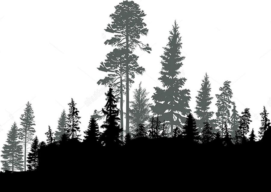 эскиз леса для тату