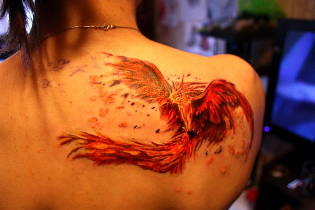 нитрат образует фото татуировок феникс компания занимается