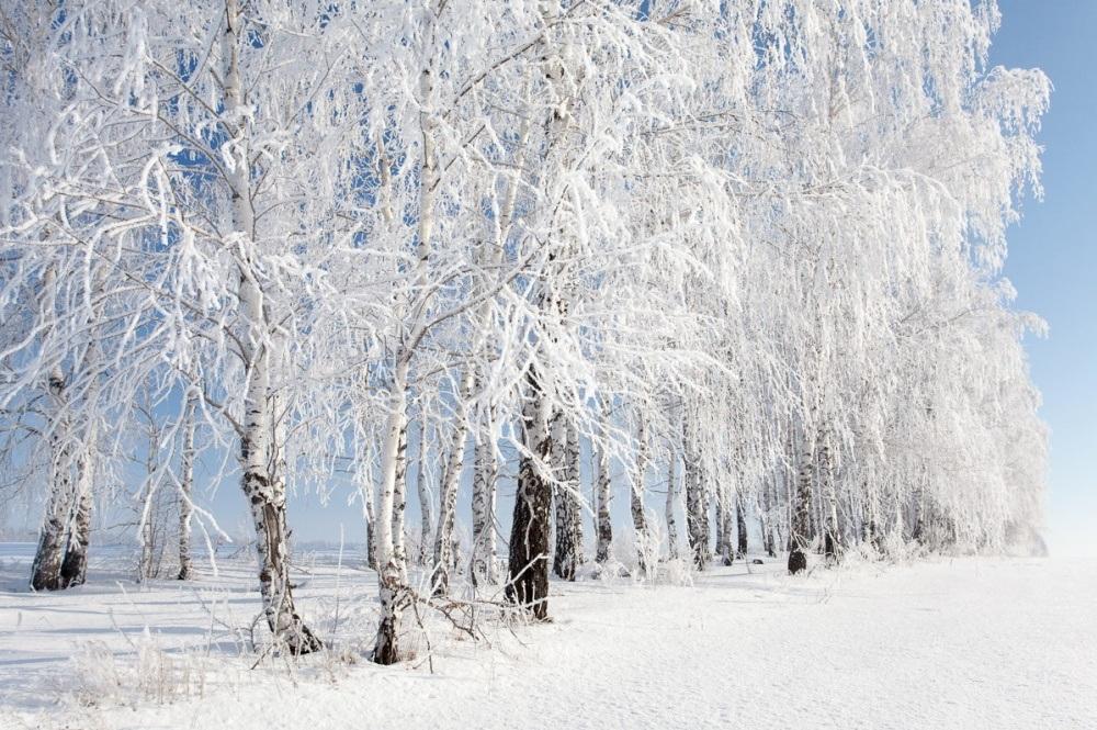 Когда наступит зима в 2019 - 2019 году. Прогноз погоды новые фото