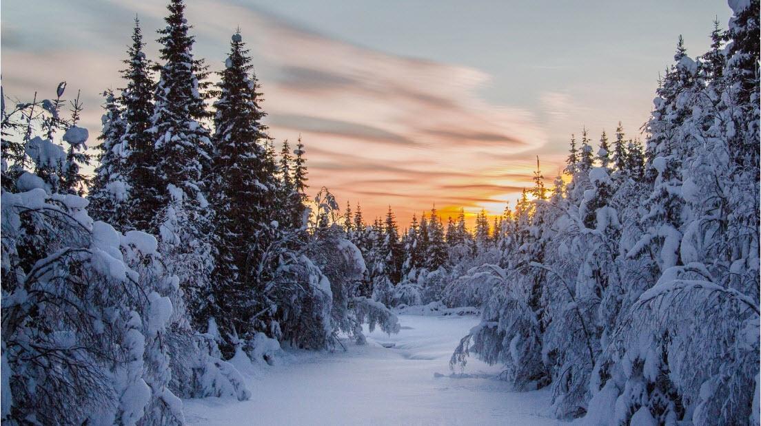 Когда наступит зима в 2019 - 2019 году. Прогноз погоды рекомендации
