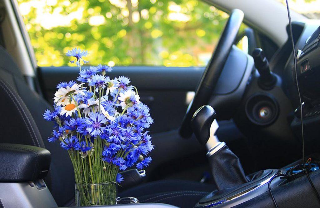 Запах сырости в машине – как избавиться?