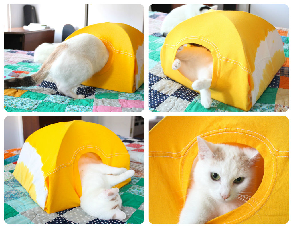 Домик для кошки своими руками из коробки и футболки