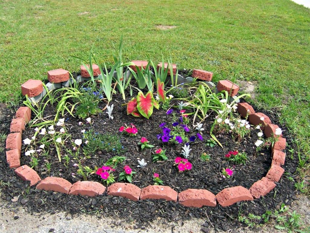 Фото красивых цветочных клумб на даче своими руками 48