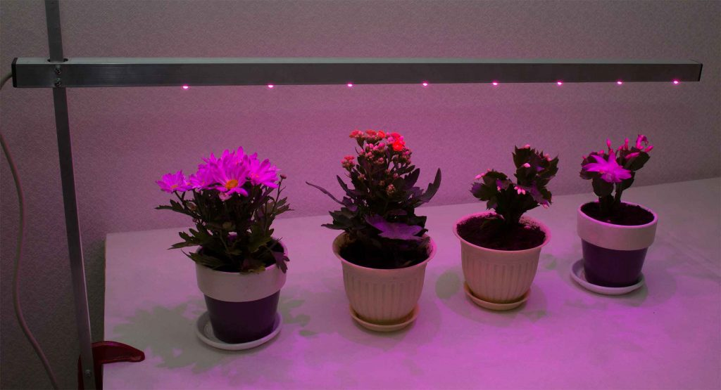 Подсветка для растений своими руками 23
