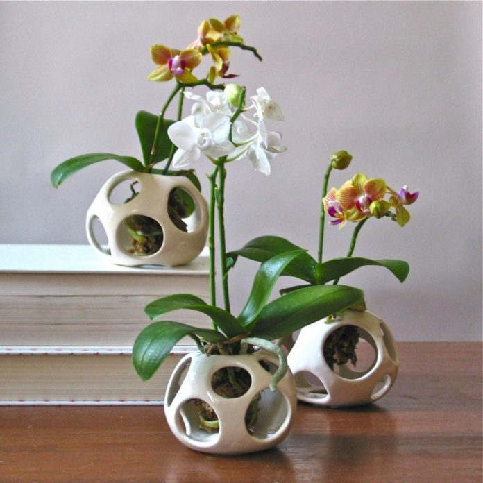 Горшки для орхидей своими руками 20