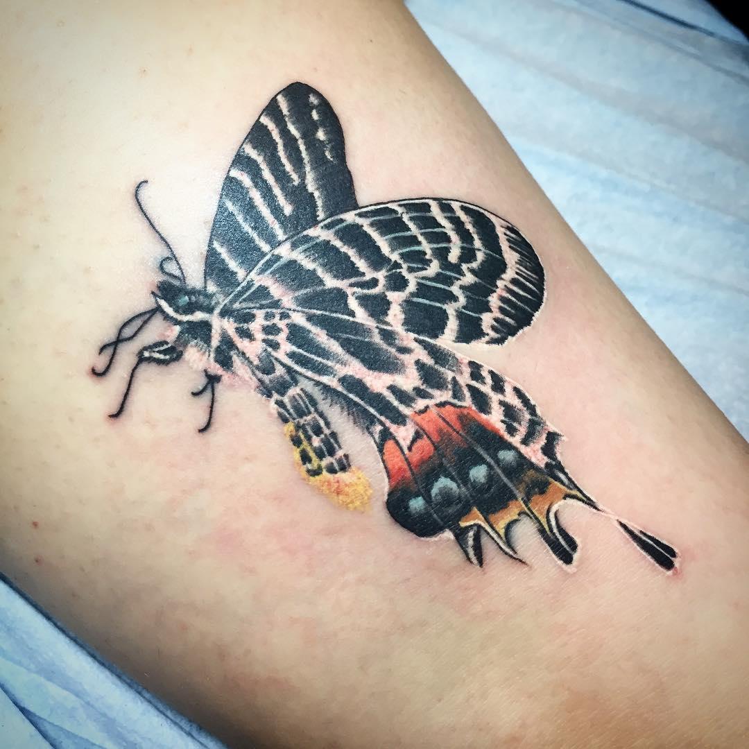 Фото тату бабочки эскиз